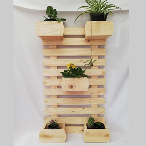 colgante para plantas